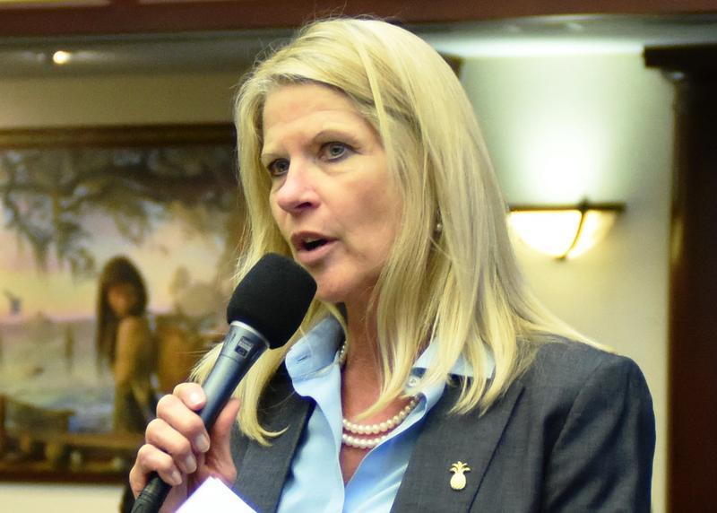 Rep. Debbie Mayfield, R-Vero Beach, debates on the House floor March 18, 2015.