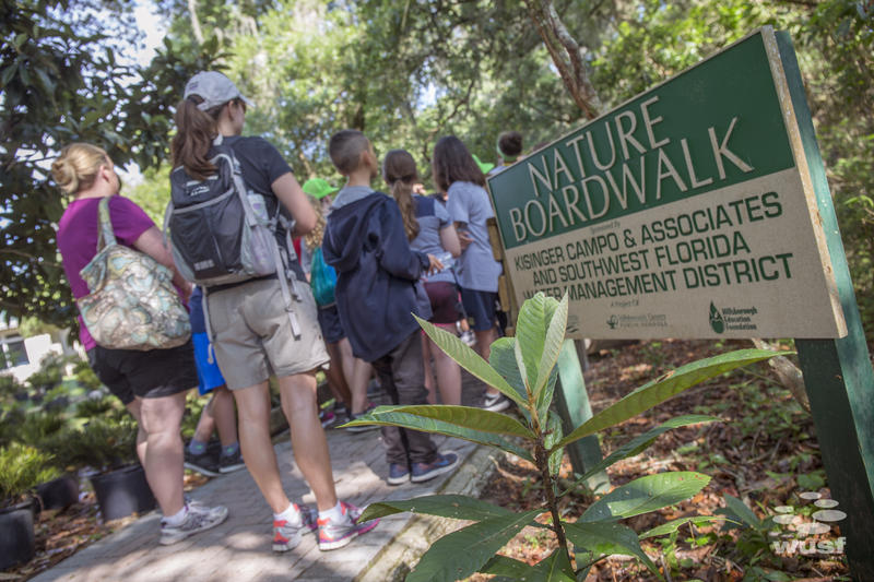 Students attend a 3-day immersion into the habitats, flora, and fauna of the Hillsborough River Watershed.