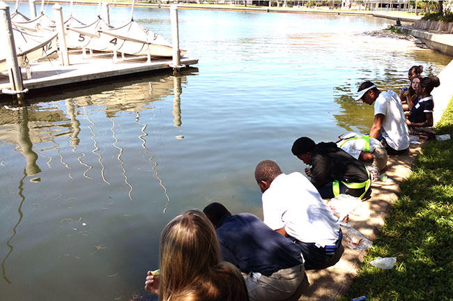 Before hitting the Bay, students looked at the wildlife in USFSP's Bayboro Harbor