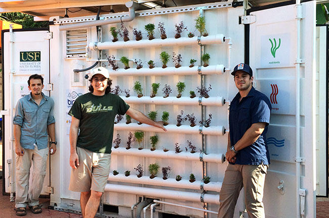USF graduate students show off the hydroponic system that grows plants using water and nutrients screened from wastewater by the NEWgenerator.
