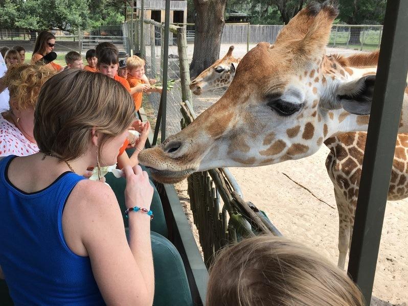 Natalie Graham gets a kiss from a giraffe.