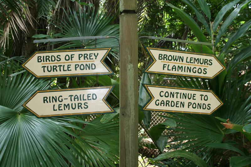 Sarasota Jungle Gardens is home to more than 200 native and exotic plants and lush tropical landscaping.