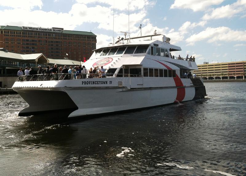 The Cross-Bay Ferry is a 98-foot catamaran that can carry up to 149 passengers.