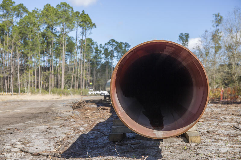 A section of the Sabal Trail Pipeline near Bronson in Levy County