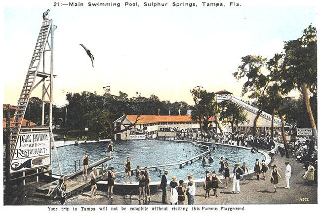"A postcard from the ""Sulphur Springs: An Enduring Legacy"" display shows visitors diving into the Sulphur Springs pool in the 1920s."