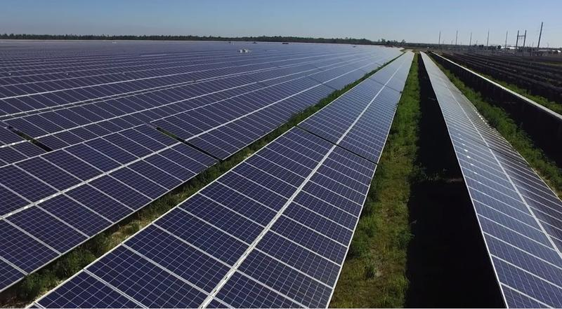 Florida Plays Catch Up On Solar Energy Playing Field