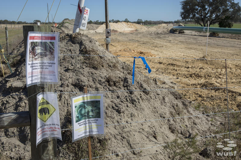 Signs for endangered species are tacked to a post at a pipeline construction site.