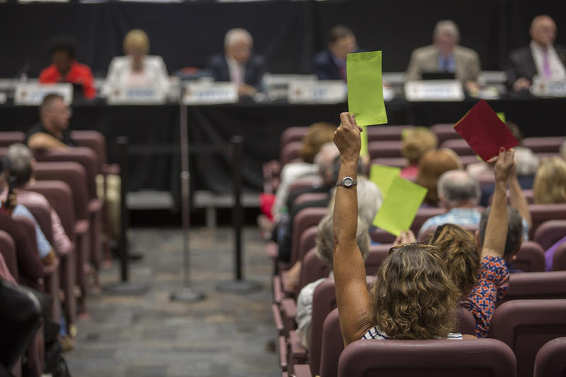 "The League of Women Voters gave out green ""agree"" and red ""disagree"" cards to hold up at the Constitution Revision Commissions public hearing in Tampa Wednesday."