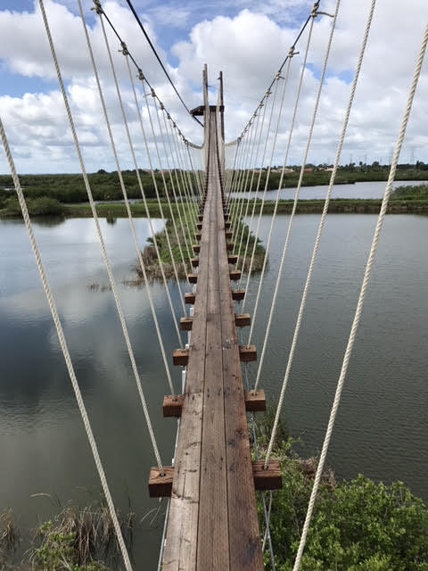 The 200 ft. long Flight of the Osprey suspension bridge offers some of the best views of the course, and is included in the basic $69 package.