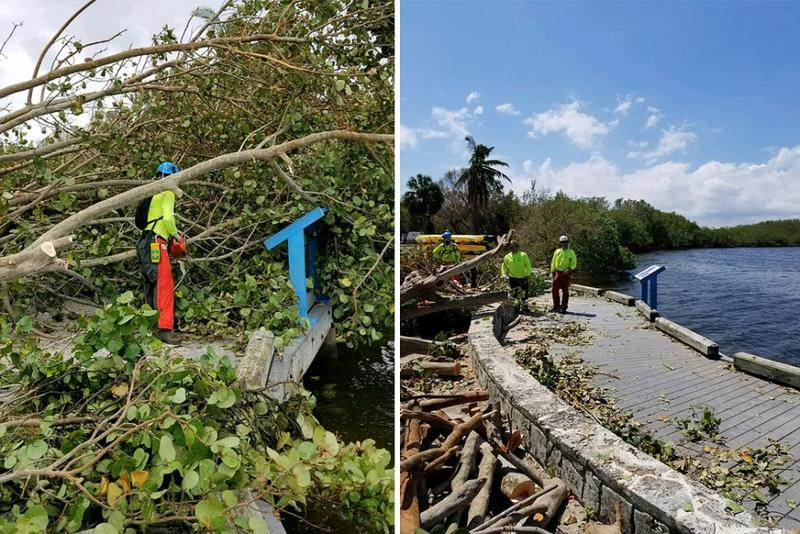 Clearing downed trees and debris from trails at Biscayne National Park