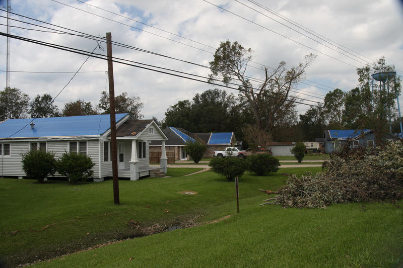 FEMA's blue tarps