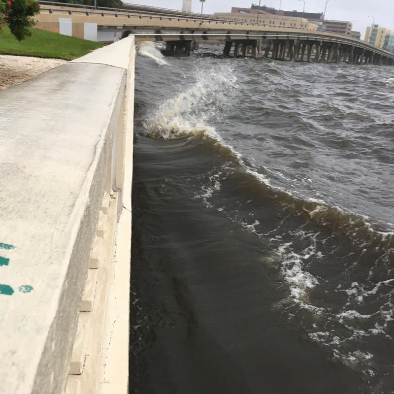 The water has returned to Tampa Bay at Bayshore Boulevard in Tampa after it receded before Hurricane Irma.