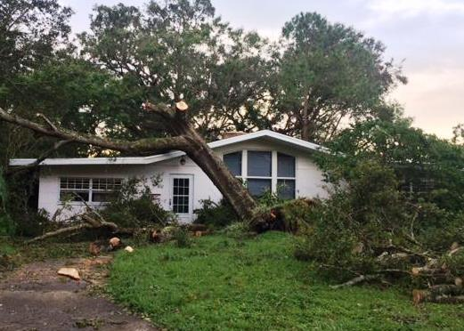 Storm debris fills the yard of a Lakeland home.