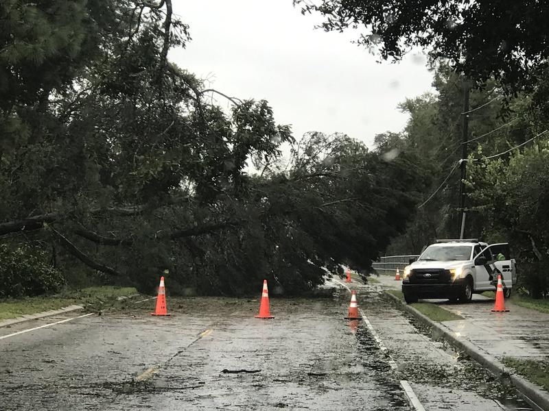 Damage in Pasco County.