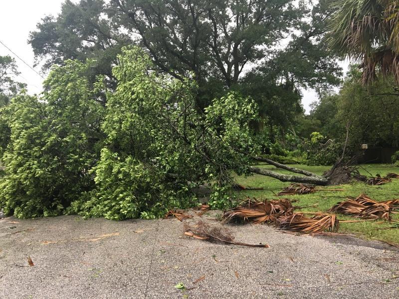 Tampa damage.