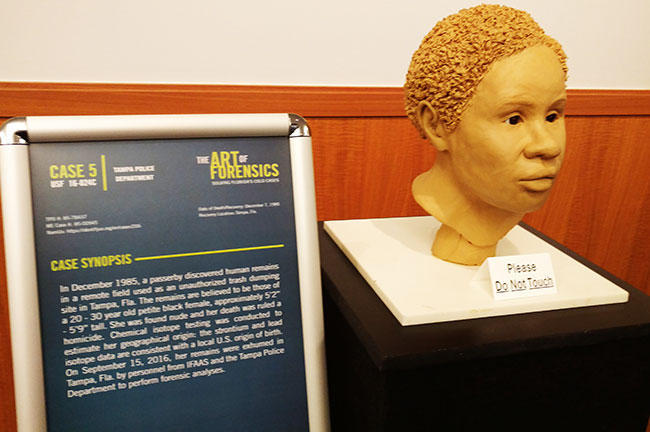 "The bust of a 3D-printed cold case profile, as presented at the 2016 USF event, ""The Art of Forensics."" Sisters Sheila and Sharon believed it could have been their sister. Tests proved it wasn't."