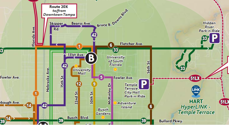 The realigned bus routes going through USF Tampa