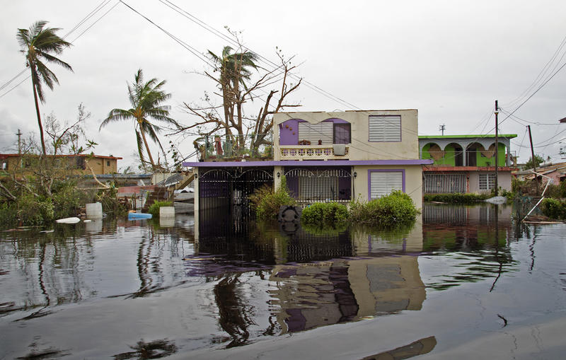 When Hurricanes Irma and Maria hit Puerto Rico last year, they destroyed homes, roads and bridges.