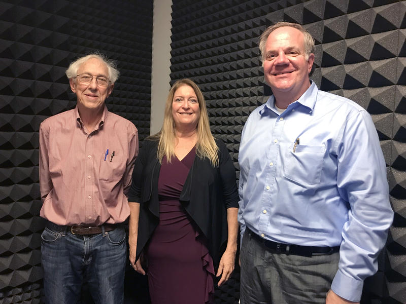 Rick Garrity (l), Susan Glickman and Ralph Fehr discuss the promise and prognosis of solar energy in the Sunshine State on this week's Florida Matters.