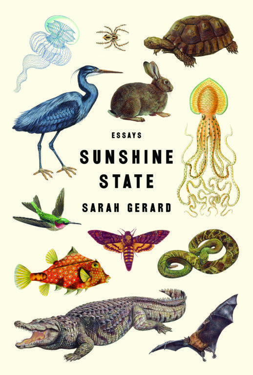 Sunshine State, a collection of essays by Sarah Gerard.