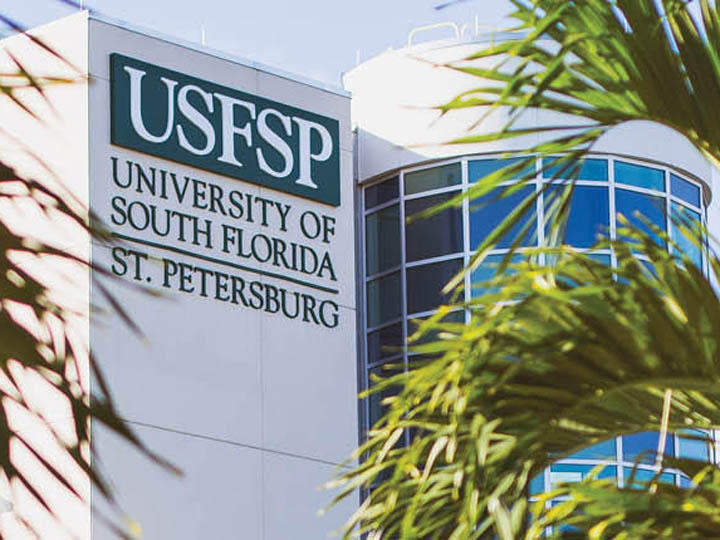 While some faculty and students at USF St. Petersburg have expressed surprise at the bill taking away the campus' separate accreditation, others say it's overdue.