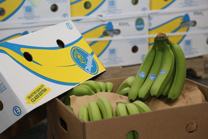 Chiquita bananas are the first perishable product received by Port Tampa Bay in over two decades.