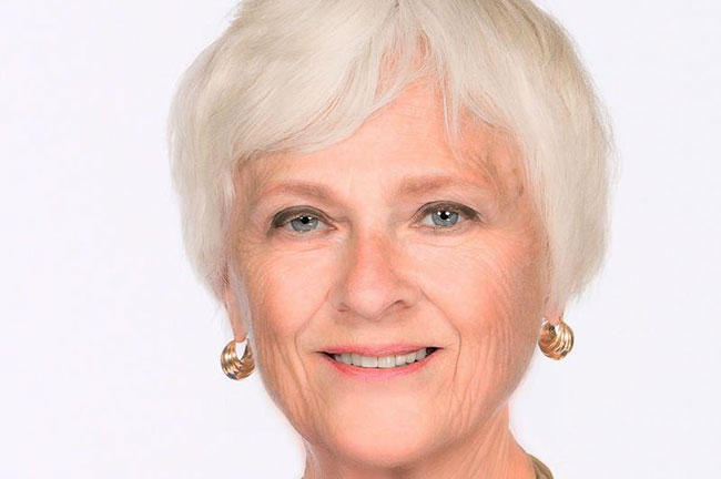 USF Sarasota-Manatee regional chancellor Karen Holbrook has held leadership roles at a number of universities around the country, including a pair of tenures with USF.