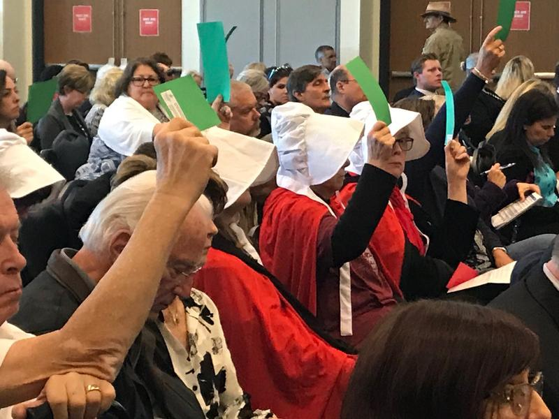 "A slew of women wearing ""Handsmaid Tale"" costumes attended Tuesday's Constitution Revision Commission hearing to oppose an amendment addressing reproductive rights."
