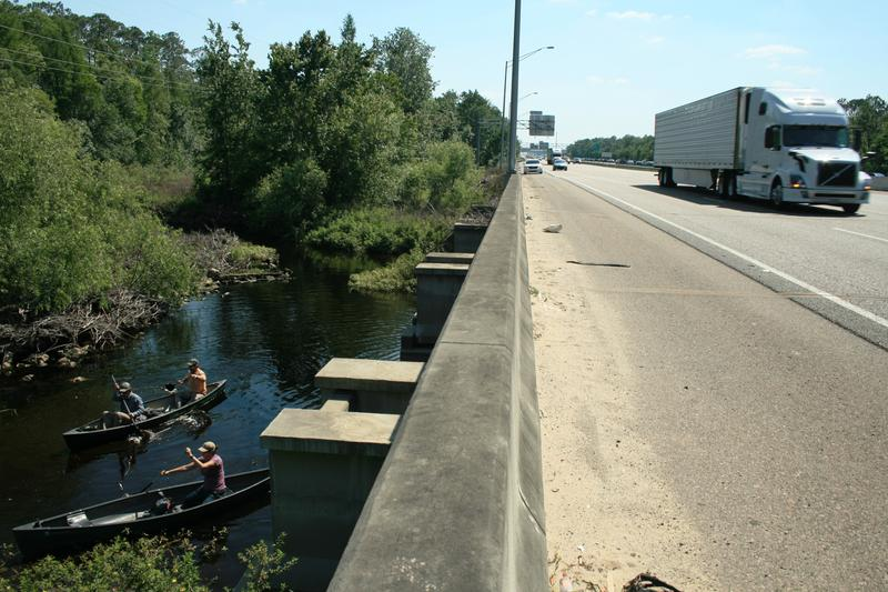Trucks on Interstate 4 zoom overhead as expedition members prepare to cross the Wildlife Corridor via Reedy Creek.