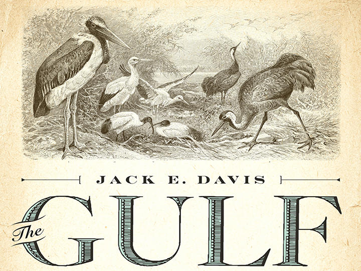 "Jack Davis recently won the 2018 Pulitzer Prize in History for his book ""The Gulf: The Making of an American Sea."""