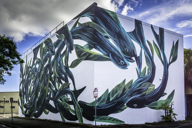 A mural created by Pantonio in 2016 covers the entire east and north sides of a St. Petersburg building.