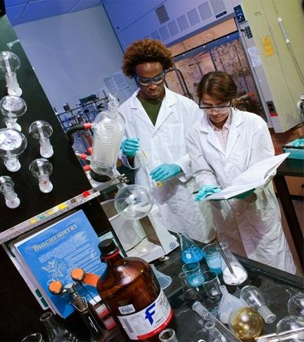USF students in science lab