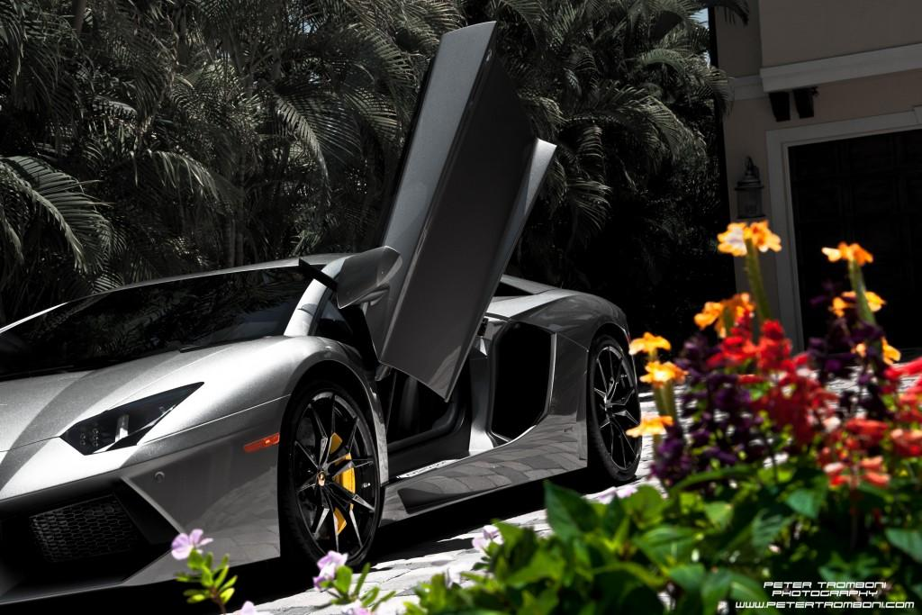 New Exotic Car Rental Company Revving Up in Sarasota | WUSF News