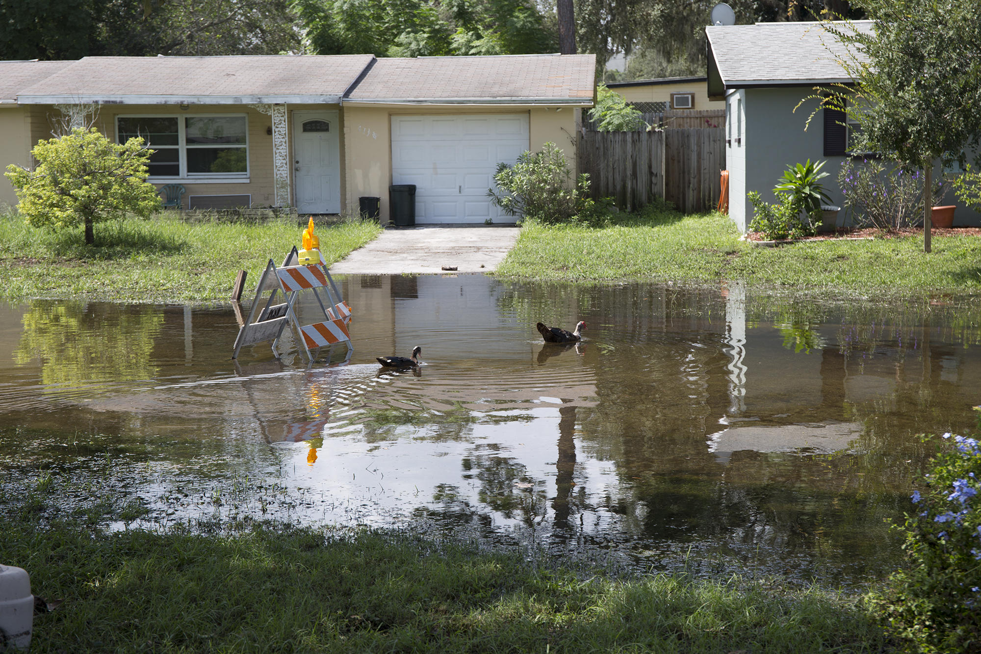 Pasco County Sees Additional Evacuations As Flooding