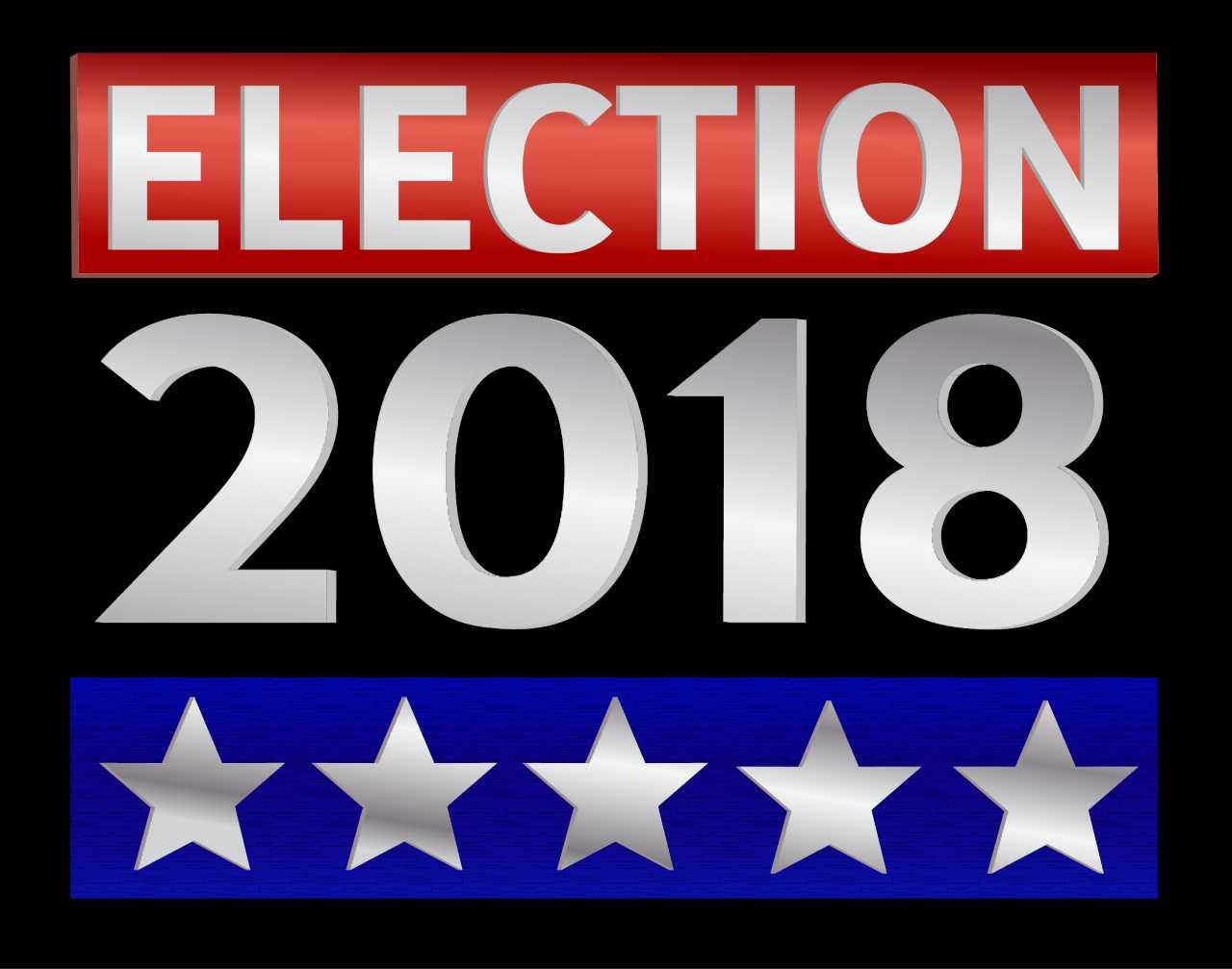 join us for special coverage of florida's primary election | wusf news