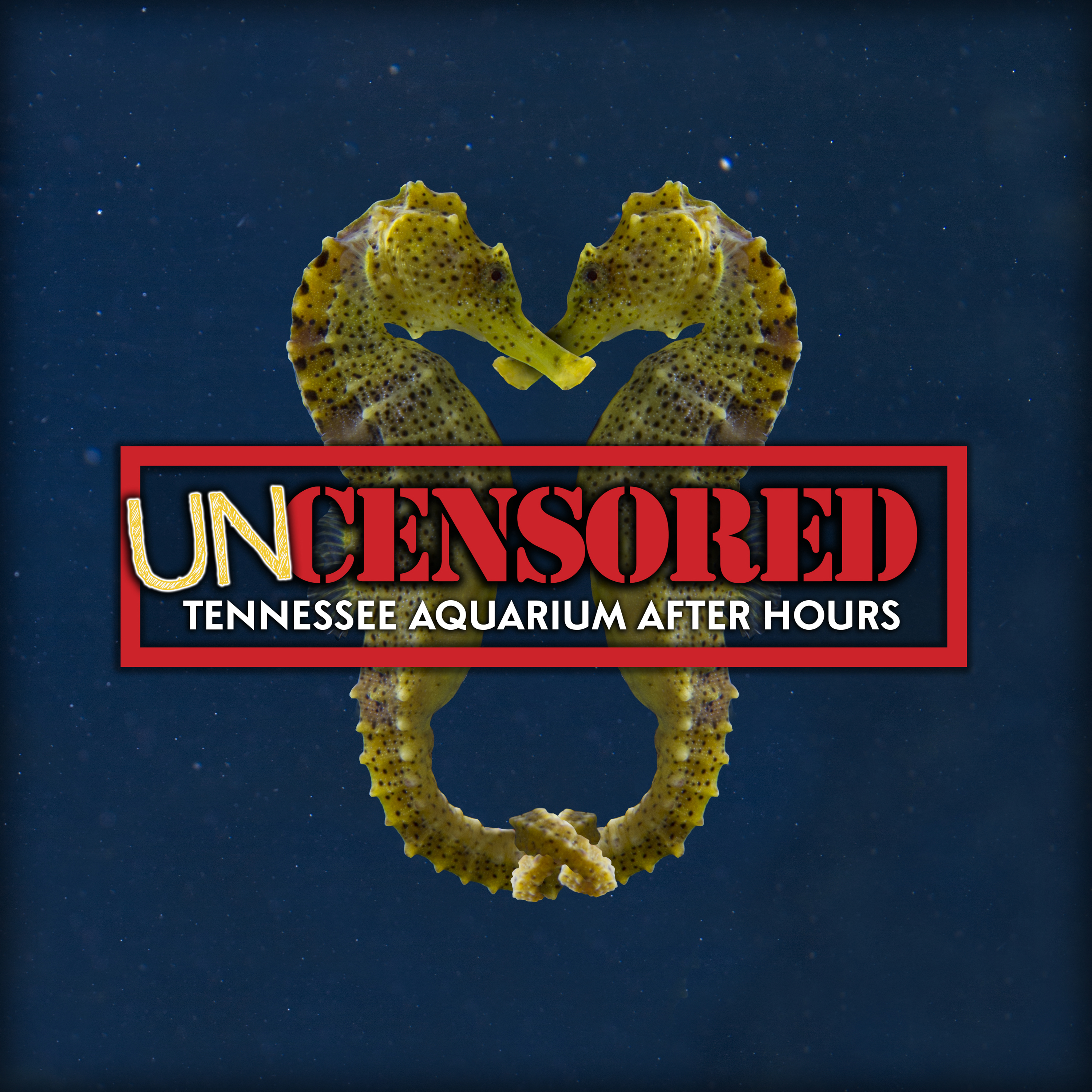 Uncensored At The Tennessee Aquarium Wutc
