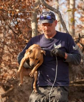 Animal Rescue Corps president Scotlund Haisley holds a dog found at a suspected dog fighting operation in Ashland City, TN.