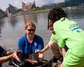 Dr. Anna George with the TNACI Lake Sturgeon Release in the Tennessee River