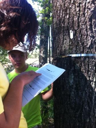 Ivy Academy student Conner Phillips reads instructions for placing a dendrometer on a tree as Trent Walker looks on.