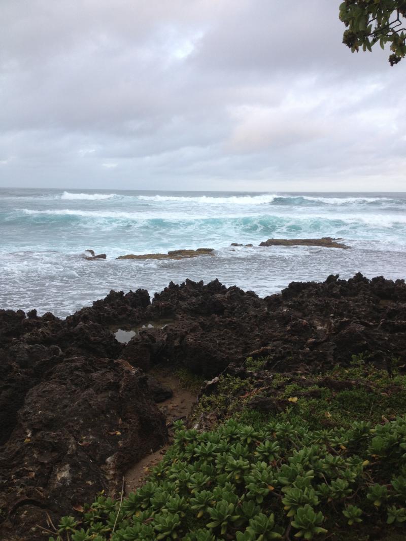 North Shore Oahau