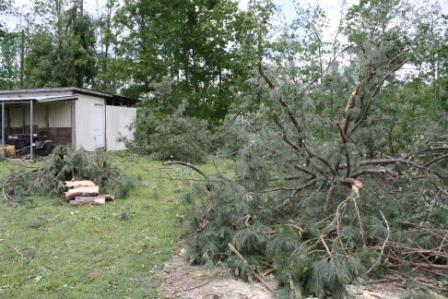 This photo shows damage near the home of Virginia and Tim Miller in Apison, Tenn., shortly after a tornado hit in April 2011.