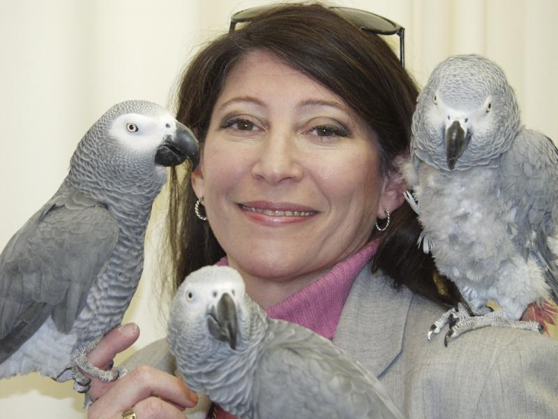 Dr. Irene Pepperberg has made breakthroughs in the field of animal cognition through her work with African Grey Parrots.