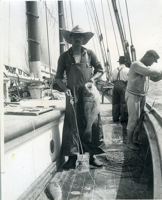 "A Pensacola red snapper fisherman holding a red snapper aboard a fishing ""smack"" (schooner)."