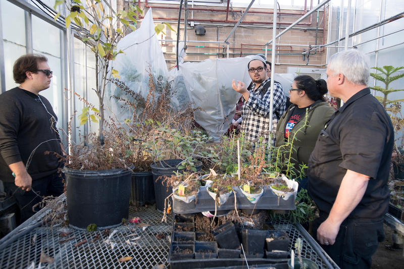 Assistant Professor Thomas Asmuth and his students check on the status of their transpiration project in the green house at the University of West Florida Tuesday January 24, 2017 in Pensacola, Florida.