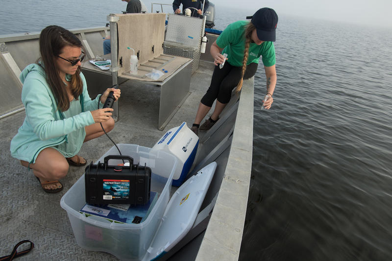 Graduate student Amy Brower records water quality paramiters while junior biology major Lauren Doubek samples water to check for lion fish DNA in the Perdido River Friday April 21, 2017 in Pensacola, Florida.
