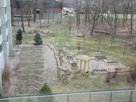 Vegetable garden adjacent to UWM dorms - viewed from student cafe.