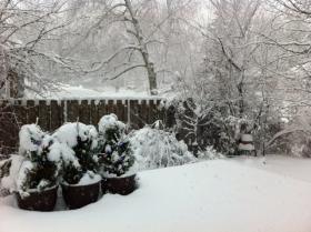A view of the snow in Madison on Thursday morning.