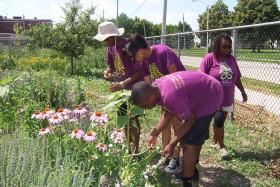 Young people in the central city tend to a community garden.