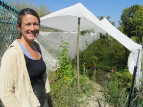 Land steward Kim Forbeck's team erected this shade cloth tent to protect shade-loving woodland plants until they are planted