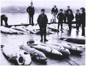 A historical image of spearfishing on Lake Winnebago